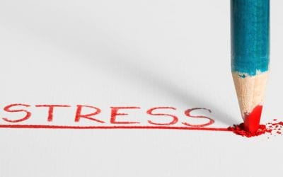 Reduce Stress Throughout Your Day